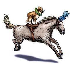 dog_pony_show