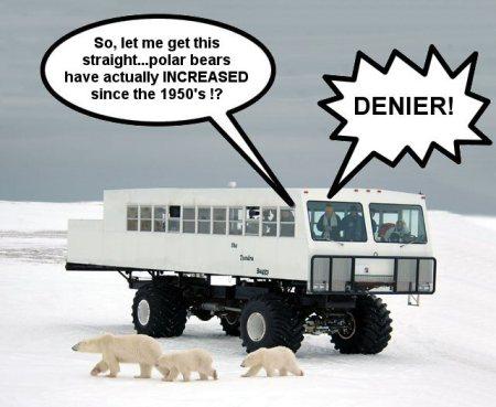 gavin_polar_bears